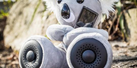 Il koala Hi-Fun