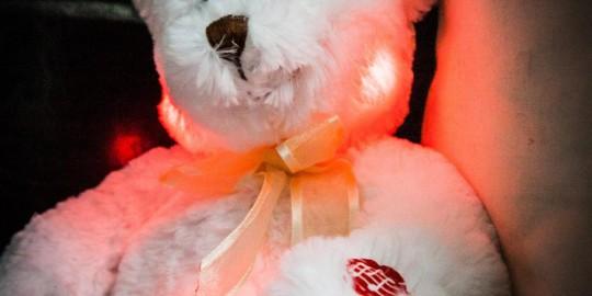 L'orsetto che si illumina