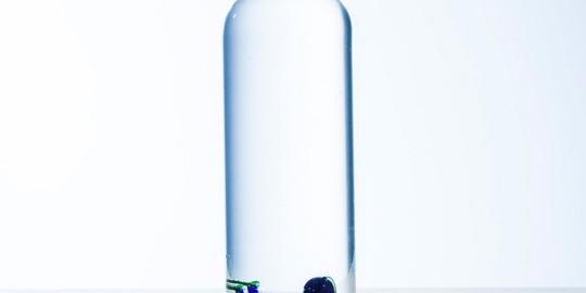 La bottiglia con il sub